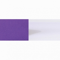 PARMA FASCHANGE PURPLE PAINT - #40180
